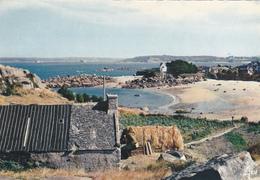 CP  Finistère - Carantec - Ile Callot - Jos Le Doaré - IRIS. - Carantec