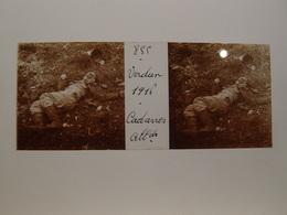 Photo Plaque De Verre Stéréoscopique Guerre 14-18 Verdun 1916 Cadavre Allemand - Diapositiva Su Vetro