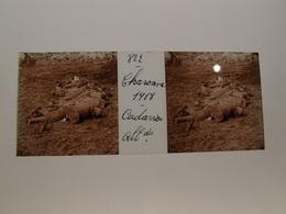 Photo Plaque De Verre Stéréoscopique Guerre 14-18 Charonne Ou Craonne Cadavres Allemands - Diapositiva Su Vetro