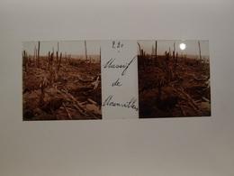 Photo Plaque De Verre Stéréoscopique Guerre 14-18 Massif De Moronvillers - Diapositiva Su Vetro