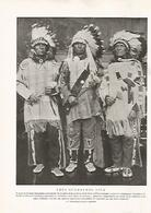 LAMINA 15547: Guerreros Sioux - Otras Colecciones