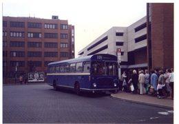 35mm ORIGINAL PHOTO BUS N°606 - F067 - Cartoline