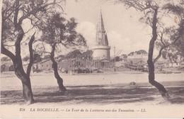 CPA -  279. LA ROCHELLE - La Tour De La Lanterne Vue Des Tamarins - La Rochelle