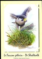 Belgie Andre Buzin Birds Herdenkingsblad 3751 FAUCON Falcon FDC ATH + STAMP + Signature Andre Buzin RR 216/600 - Cartas Commemorativas