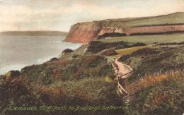 R201586 Exmouth. Cliff Path To Budleigh Saltertan. Friths Series. No. 68716. 1922 - Cartes Postales