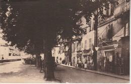 06 - SOSPEL - Les Frais Ombrages De La Route Nationale - Sospel