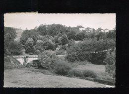 CPM 88 CHATILLON SUR SAONE Le Pont Des Perches - France