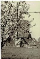 SCHERPENHEUVEL - 6 Kleine Foto's 9,5 X 6,5 Cm - Standaard Molen - Scherpenheuvel-Zichem
