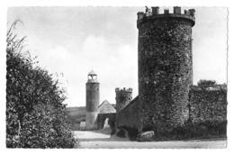 Le Rozel (Manche) Château   (CPSM, Bords Dentelés, Format 9 X 14) - Autres Communes