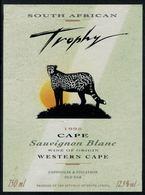 Etiquette De Vin // Afrique Du Sud, Sauvignon Blanc, Le Guépard - Sud Africa