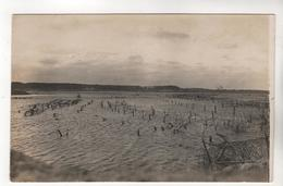 6651, FOTO-AK, WK I, Lettland, Überschwemmung, Richtung Straße Mitau - Riga - War 1914-18