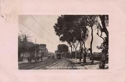 CPA Boulevard D' Allemagne - Alexandrie - Alejandría