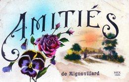 Amitiés De Mignovillard. - France