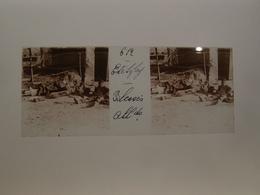 Photo Plaque De Verre Stéréoscopique Guerre 14-18 Somme Etelfay Bléssés Allemands - Diapositiva Su Vetro