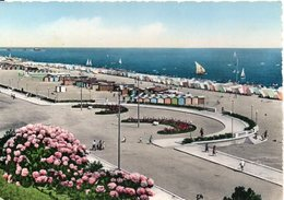 La RIVIERA DI RIMINI - La Più Bella D'Italia - Spiaggia E Piazza Tripoli - Rimini