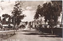 Asmara - Il Viale Crispi - HP1724 - Eritrea