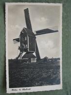 WEEBOSCH ( Bergdijck ) - FOTOKAART MOLEN - Ohne Zuordnung