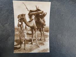 IT  - ERYTHREE - ERITREA - CASA CAMMELLATA ARABA - Eritrea