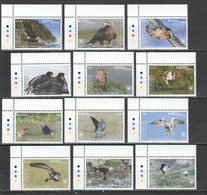 VV554 2018 !!! EXCLUSIVE PENRHYN FAUNA BIRDS OF PREY EAGLES OWLS !!! 22 EURO NOMINAL 1 BIG SET MNH - Aquile & Rapaci Diurni