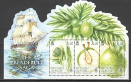 S719 2015 PITCAIRN ISLANDS PLANTS FRUITS SHIPS BREADFRUIT SAGA !!! MICHEL 13 EURO !!! 1BL MNH - Schiffe