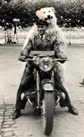 Carte Photo Originale Déguisement & Eisbär, Ours Blanc Polaire Passager à Moto à Identifier Vers 1940/50 - Anonymous Persons
