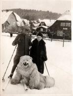 Photo Originale Déguisement & Eisbär, Ours Blanc Polaire & Couple à Skis Sur La Neige à Braunlage Vers 1930 - Anonymous Persons