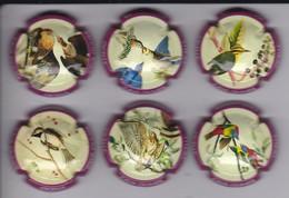 SERIE COMPLETA DE 6 PLACAS DE CAVA OLIMER DE PAJAROS (CAPSULE) BIRD - PAJARO - Placas De Cava