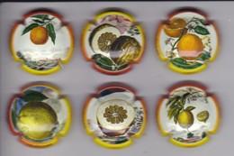 SERIE COMPLETA DE 6 PLACAS DE CAVA DE FRUTAS (CAPSULE) CITRICOS - FRUTA - Placas De Cava