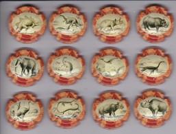 SERIE COMPLETA DE 12 PLACAS DE CAVA DE ANIMALES PREHISTORICOS (CAPSULE) DINOSAURIO - Placas De Cava