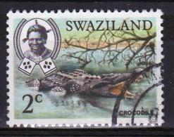 Swaziland Queen Elizabeth 1969 Single 2c Definitive Animals Stamp. - Swaziland (1968-...)