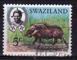 Swaziland Queen Elizabeth 1969 Single 5c Definitive Animals Stamp. - Swaziland (1968-...)