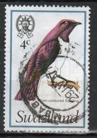 Swaziland Queen Elizabeth 1976 Single 4c Definitive Bird Stamp. - Swaziland (1968-...)