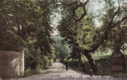 AR44 Isle Of Wight, Ryde, Appley Lane - Angleterre