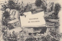 Cp , 29 , FOUESNANT , Souvenir De BEG MEIL - Fouesnant