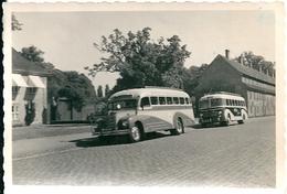 2 Beaux Autobus à Identifier Au Dos 1950 Excursion Aux Brasseries Tuborg Danemark - Cars