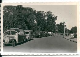 Plusieurs Autobus Dont Un Citroën Au Premier Plan  Au Dos 1950 Balade Au Danemark - Cars