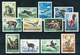 Rumanía Nº 1438/49 Nuevo - 1948-.... Republics