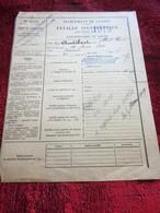 1919-DIRECTION BUREAUX AMBULANTS MÉDITERRANÉE FEUILLE SIGNALÉTIQUE AVANCEMENT CLASSE P.T.T. POSTES TÉLÉGRAPHES TÉLÉPHONE - Historical Documents