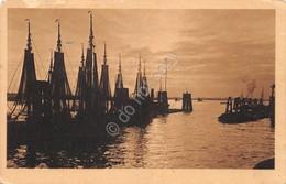 Cartolina Slovenia Barche A Vela 1917 - Cartoline