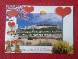 POSTAL POST CARD CARTE POSTALE FRANCE CHINON INDRE-ET-LOIRE RABBIT LAPIN LIÈVRE HARE HASE LIEBRE CONEJO RABBITS VE FOTOS - Francia