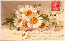 Catharina KLEIN - Bouquet De Marguerites - Klein, Catharina