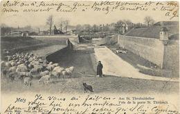 ~  BS  ~  57   ~  METZ    ~  Près De La Porte ST THIEBAULT ~  NELS  Série 104  ~  N°  198   ~ - Carhaix-Plouguer