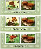 Tajikistan. 2019 Mushrooms(Butterflies,Hedgehog,Frog).Imperf 3v:3.50,4.20,5.80+label - Tadschikistan