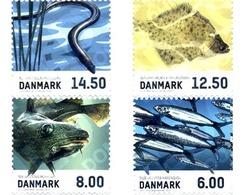 Ref. 295376 * MNH * - DENMARK. 2013. MARINE FAUNA . FAUNA MARINA - Danimarca