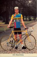 WAYENBERG Dirk BEL (Geraardsbergen (Oost-Vlaanderen), 14-9-'55) 1984 Europ Decor - Boule D'Or GESIGNEERD! | SIGNÉ! - Cyclisme