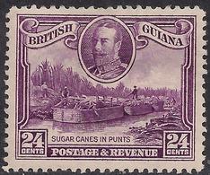 British Guiana 1934 - 51 KGV 24ct Sugar Canes In Punts MM SG 294 ( D1014 ) - British Guiana (...-1966)
