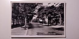 UK - England - North West England, Grande Manchester - Sale - School Road - 1959 - Inghilterra