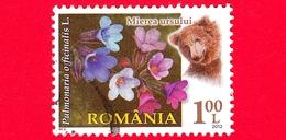 ROMANIA - Usato - 2012 - Flora E Fauna - Fiori - Fleurs - Orso - Pulmonaria Officinalis - 1.00 - 1948-.... Repubbliche