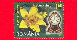 ROMANIA - Usato - 2013 - Fiori - Calta Palustre - Caltha Palustris - Orologio 8 A.m - 1.60 - 1948-.... Repubbliche