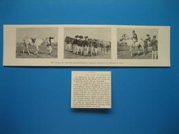 (1910) Aux Courses De GUÉRANDE - Hippodrome De Ker-Hudé - (Loire-Inférieure) : Types De Jockeys Et De Pur Sang Du Pays - Zonder Classificatie